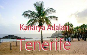 Kanarya Adaları: Tenerife Rehberi